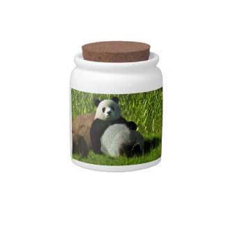 Reclining Panda Candy Jar