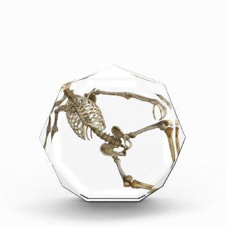 Reclining Skeleton Award