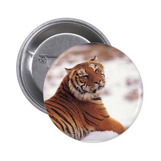 Reclining Tiger 2 Inch Round Button