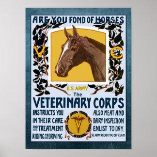 Reclutamiento veterinario del ejército del cuerpo póster
