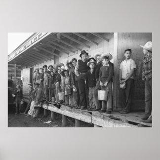 Recogedores jovenes del guisante los años 40 poster