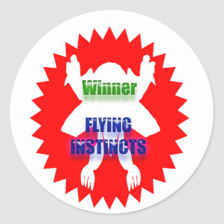 Recognize Excellence : Winner Flying Instincts Classic Round Sticker