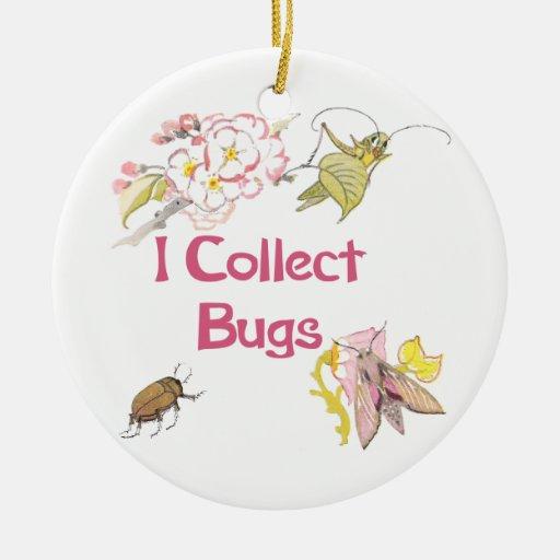 Recojo insectos ornamento de reyes magos