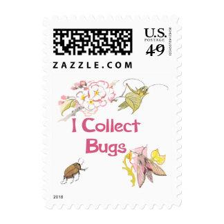 Recojo insectos sello