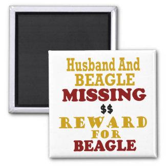 Recompensa que falta del beagle y del marido por b imán cuadrado
