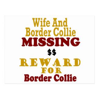 Recompensa que falta del border collie y de la esp tarjeta postal