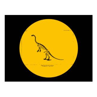 Reconstrucción de Colurus del Anchisaurus Tarjeta Postal