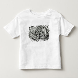 Reconstruction of an Iron Age village at Biskupin Toddler T-shirt