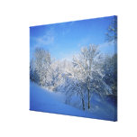 Record snow in Louisville, Kentucky. Canvas Print