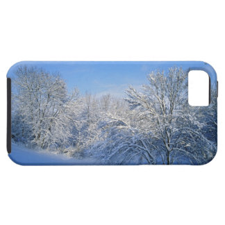 Record snow in Louisville, Kentucky. iPhone 5 Cover