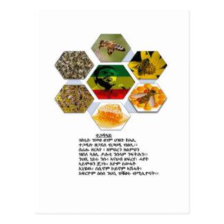Recordar Meles Tarjetas Postales