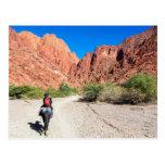 Recorriendo los valles de Tupiza, Bolivia. Postales