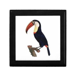 Recorte colorido del ejemplo del vintage de Toucan Cajas De Recuerdo