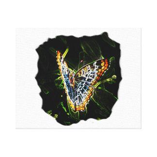 Recorte de los bordes de la mariposa que brilla in lona estirada galerías