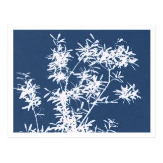 Recorte rígido azul y blanco del gráfico de las ho tarjeta postal
