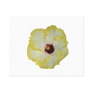 Recorte rojo amarillo de la floración del hibisco lona estirada galerias