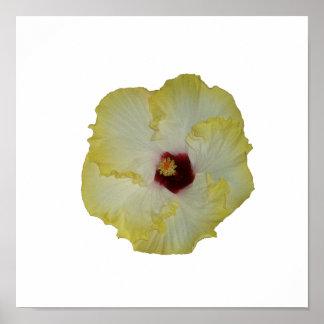 Recorte rojo amarillo de la floración del hibisco impresiones