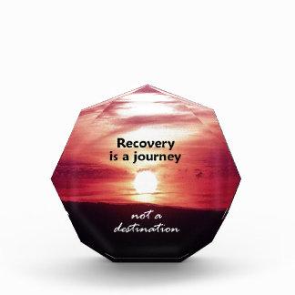 Recovery Acrylic Award