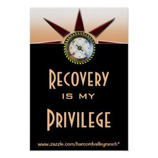 Recovery is my privilege poster