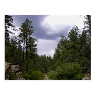Recreational Activities: Prospecting Postcard