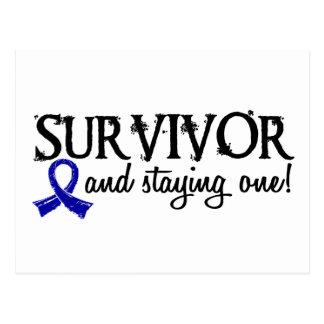 Rectal Cancer Survivor 18 Post Cards