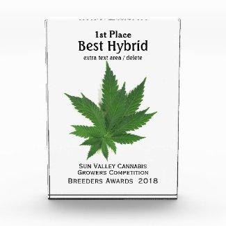 Best Hybrid