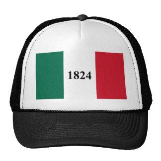 Recuerde la bandera del estado de Álamo Tejas Gorros Bordados