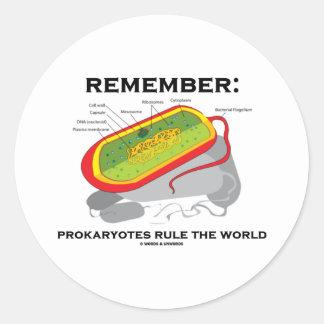 Recuerde: Los Prokaryotes gobiernan el mundo Pegatina Redonda