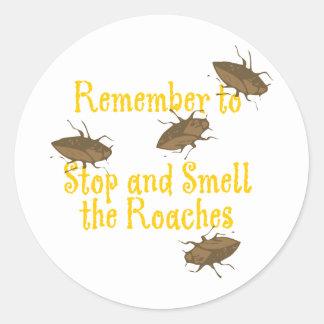 Recuerde parar y oler las cucarachas pegatina redonda