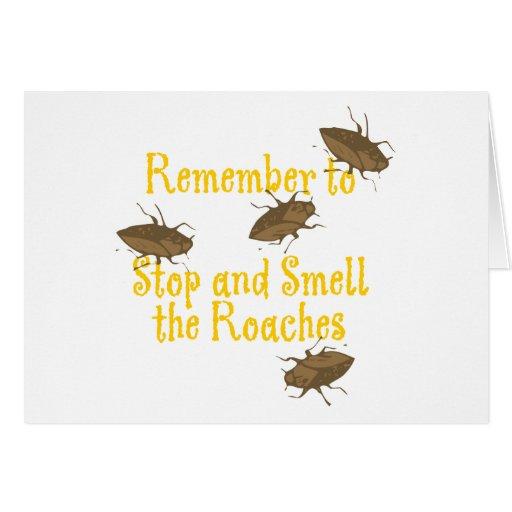 Recuerde parar y oler las cucarachas tarjeta de felicitación