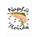Recuerdo clasificado pescados postales