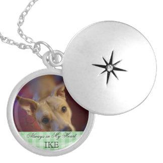 Recuerdo conmemorativo de la foto del mascota collar con colgante