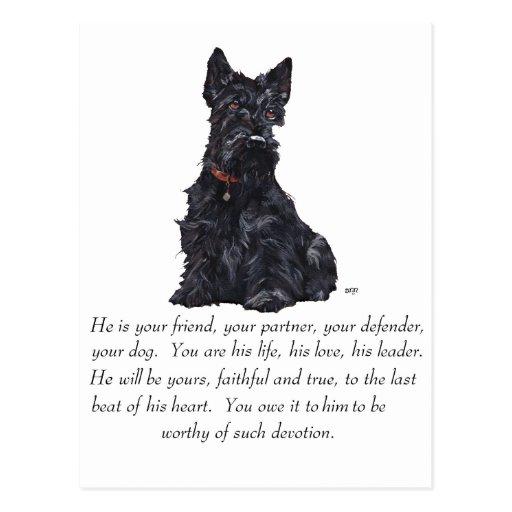 Recuerdo de Terrier del escocés - perro MASCULINO Tarjetas Postales