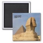 Recuerdo del imán del refrigerador de Egipto