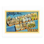 Recuerdo del viaje del vintage de Tejas TX de la Postal