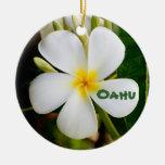 Recuerdo hawaiano adorno navideño redondo de cerámica