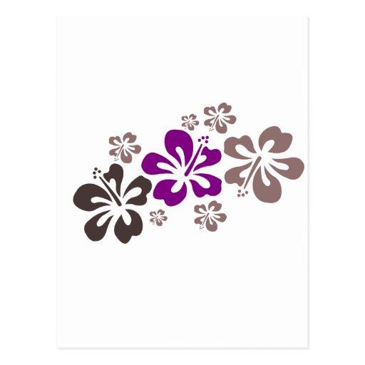 Recuerdo púrpura y gris de Hawaii del hibisco Postales