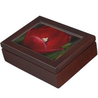 Recuerdos rojos hermosos del tulipán caja de recuerdos