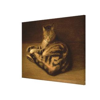 Recumbent Cat, 1898 Canvas Print