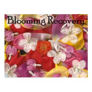 Recuperación floreciente 10 postales