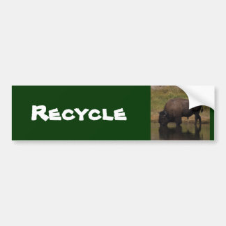 Recycle Bumper Sticker
