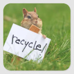 recycling chipmunk square stickers