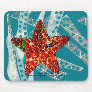 Recycling Starfish Mousepads