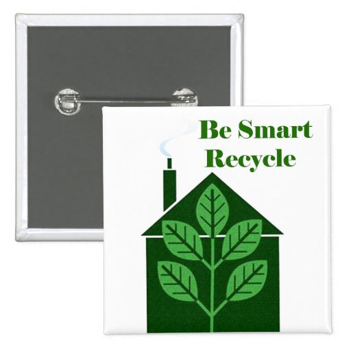 Recyle Be Smart Environmental Issues Pinback Button