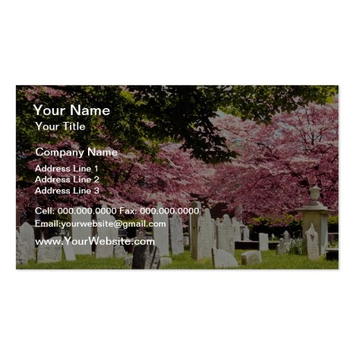 Red 18th century colonial graveyard flowers Double-Sided standard business cards (Pack of 100)