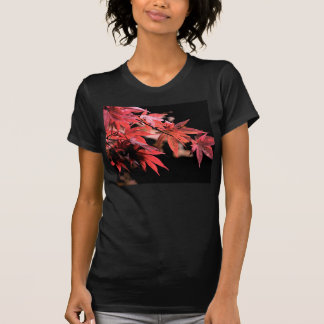Red Acer Ladies Black T-Shirt