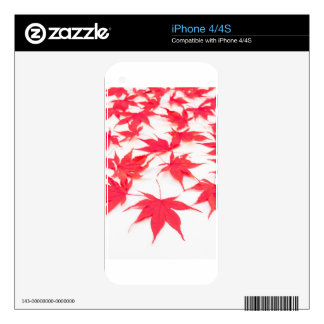 Red Acer leaves on white background Skins For The iPhone 4S
