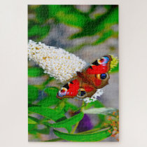 Red Admiral Butterflies. Jigsaw Puzzle