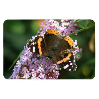 Red Admiral Butterfly and Buddleia Flexi Magnet