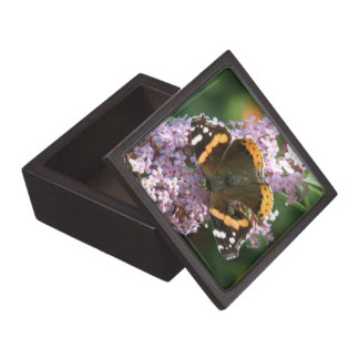 Red Admiral Butterfly and Buddleia Gift Box